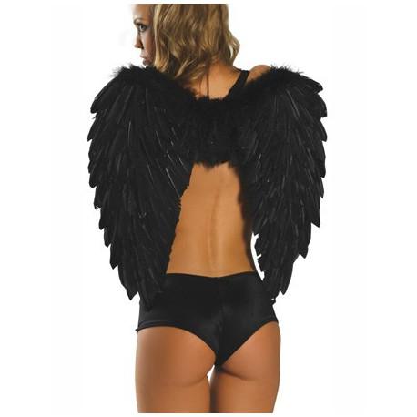 Aile d'ange noir